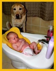 Baby Bidet